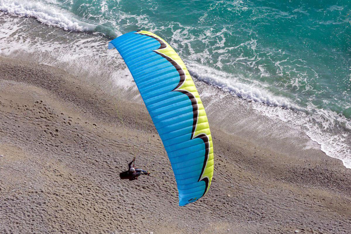 پرواز کنار آب در ساحل دریا